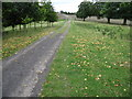 SK3199 : Footpath through Wortley Park by Chris Wimbush