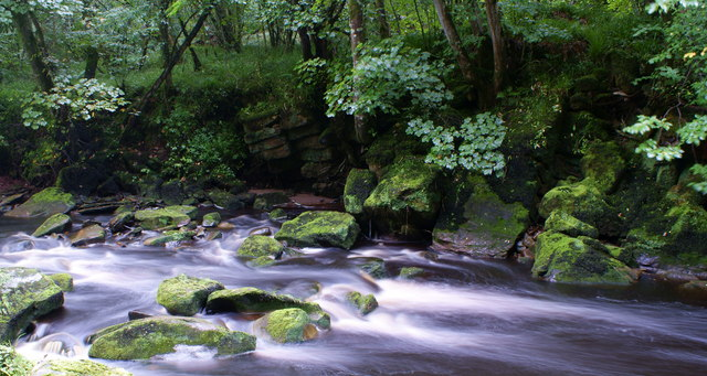 River Lyne in Shankwoods