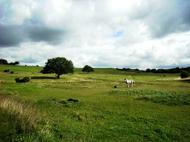 Heath Common, Heath