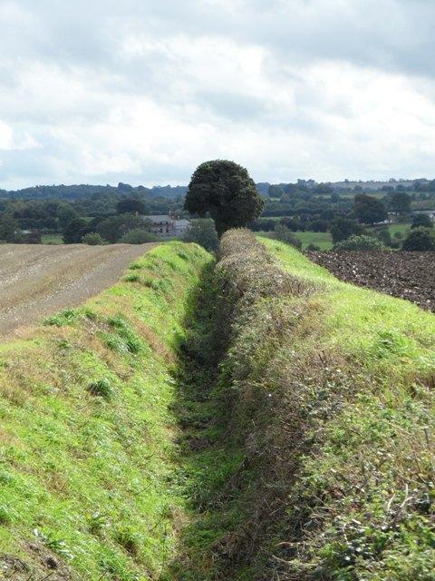 Ditch in Staffordstown, near Kentstown, Co. Meath