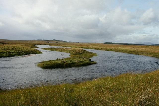 River Mature 37