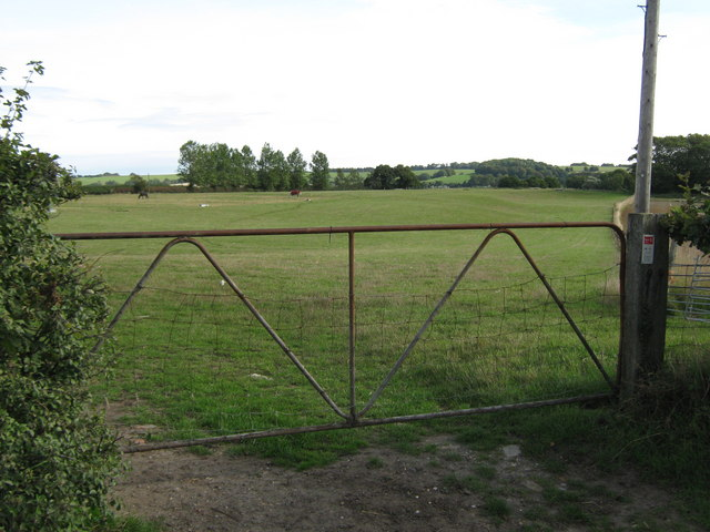 Gate on Swan Lane