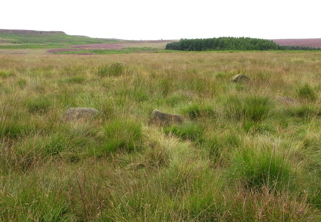 Stone Circle on Beeley Moor