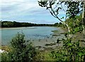 S8009 : Bannow Bay by Mary and Angus Hogg