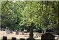 TQ0844 : St Mark's Church Graveyard, Peaslake by N Chadwick