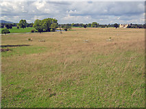 SO8844 : Croome Park panorama by Trevor Rickard