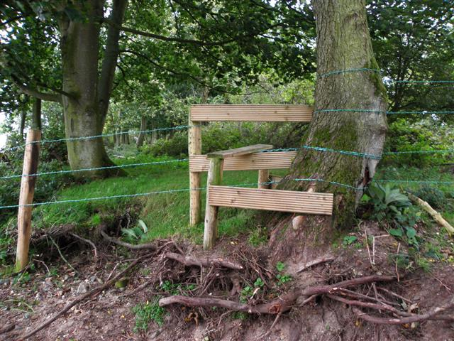 stile and tree roots near lough neagh kenneth allen. Black Bedroom Furniture Sets. Home Design Ideas