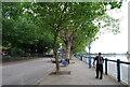 TQ2376 : Thames Path along Putney Embankment by N Chadwick