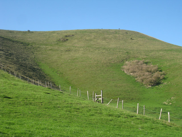 South Downs hill