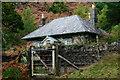 SH6641 : Coed-y-bleiddiau, Gwynedd by Peter Trimming