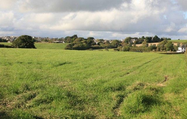 Fields nr Ashen Cross