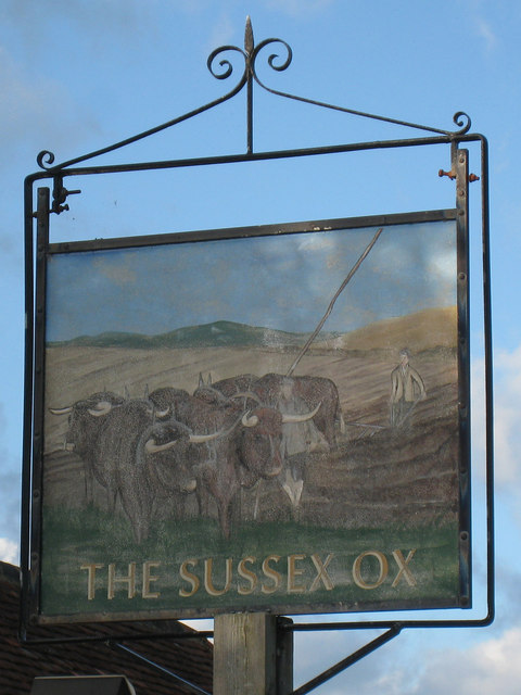The Sussex Ox sign