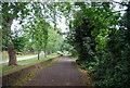 TQ1877 : The Thames Path heading upstream by N Chadwick
