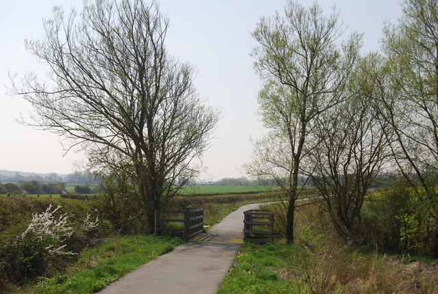 National Cycle Route 2 crosses a small stream near Berwick