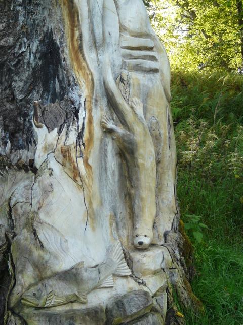 Carved tree stump rosehaugh estate sylvia duckworth cc
