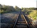 SJ3762 : Railway line at Balderton Crossing by John S Turner