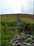 SH8615 : Uphill beside the dry stone wall by Richard Law