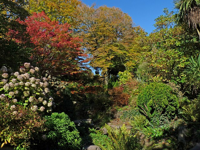Autumn colours around the cascade, Belle Vue Park