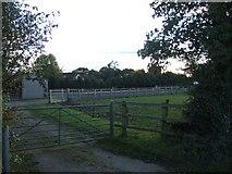 SJ5266 : Paddock at Weetwood Common by David Smith