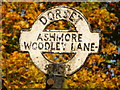 ST9118 : Ashmore: detail of Woodley Lane signpost by Chris Downer