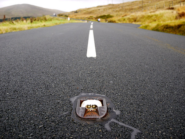 Cats Eyes Road >> Cat's Eye on the Slievenaman Road © Rossographer :: Geograph Ireland