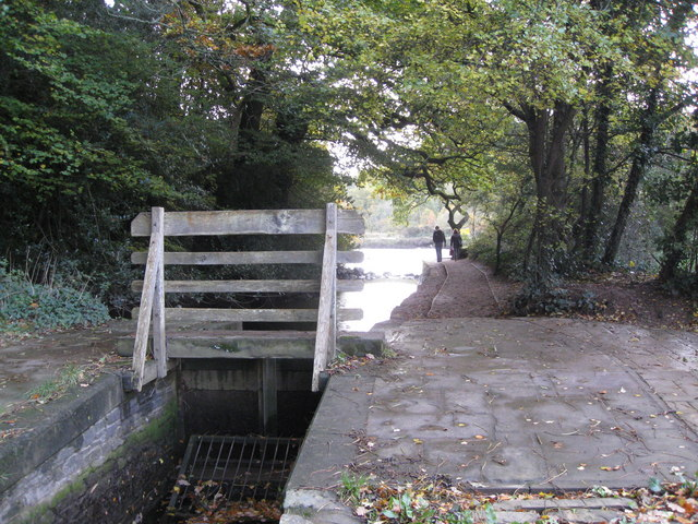 Longmarsh Leat and sluice gate