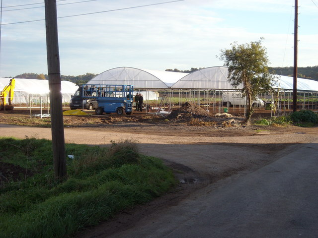 Erecting Greenhouses, Offenham
