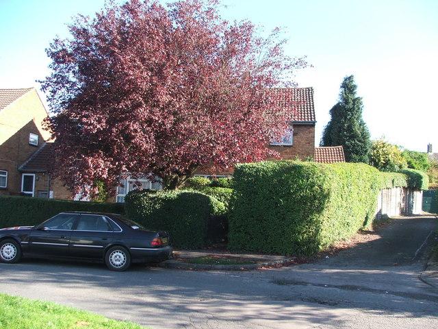 Redhall Drive, Hatfield