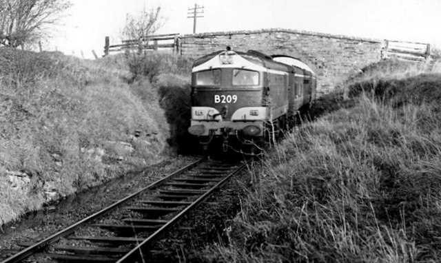 Railway at Killimor near Attymon Jct (4)
