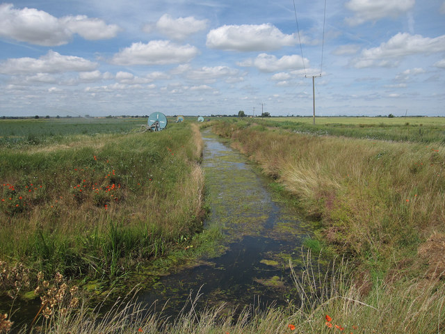 Ditch by Bedingham's Drove