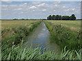 TL4277 : Ditch across South Fen by Hugh Venables