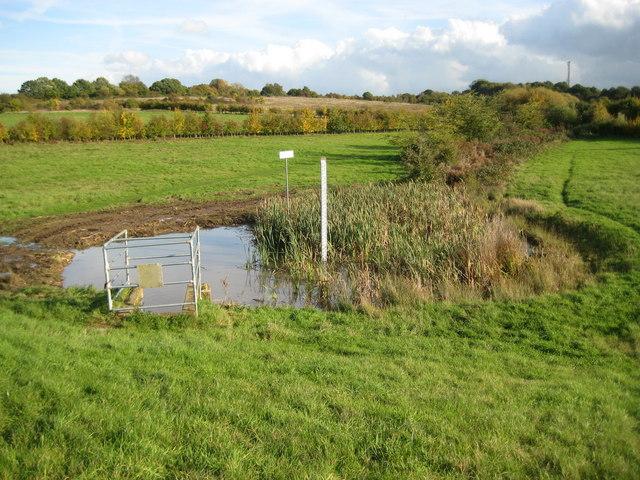 North Weald Bett Lower Thornhill Flood Storage Area