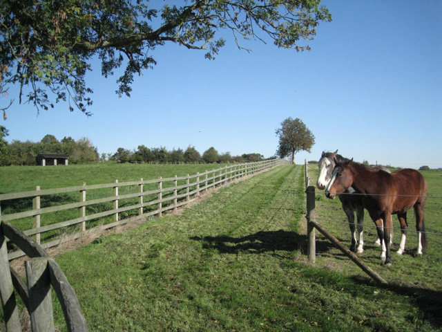 Paddocks at Finwood Green