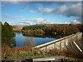 SE1557 : Thruscross Reservoir : Week 45