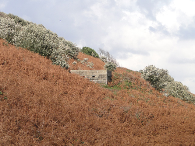 Pillbox set into the cliff at Gunton, north of Lowestoft