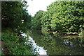 TQ5646 : River Medway by N Chadwick