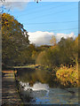 SD7606 : Manchester, Bolton & Bury Canal, Little Lever by David Dixon