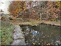 SD7506 : Manchester, Bolton & Bury Canal, Dam by David Dixon