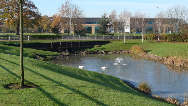 Water garden, Cheadle Royal Business Park