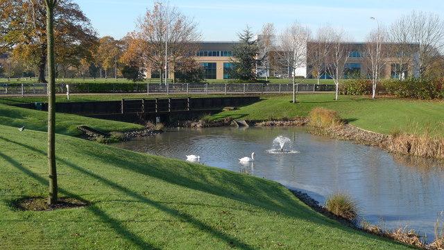 Water garden, Cheadle Royal Business Park