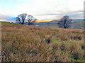 SD7013 : View Towards Dunscar & Egerton by David Dixon