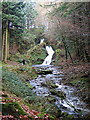 SN7773 : Rhaeadr Peiran, Hafod estate by Rudi Winter