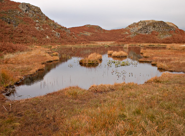 Small Tarn on Loughrigg Fell
