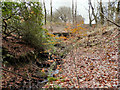 SD7012 : Raveden Brook, Smithills Country Park by David Dixon
