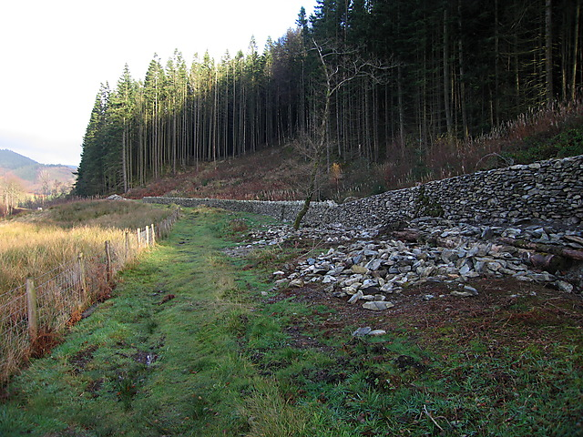Enclosing wall, Hafod estate