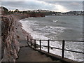 SX9062 : Steps to Livermead Sands, Torquay : Week 47