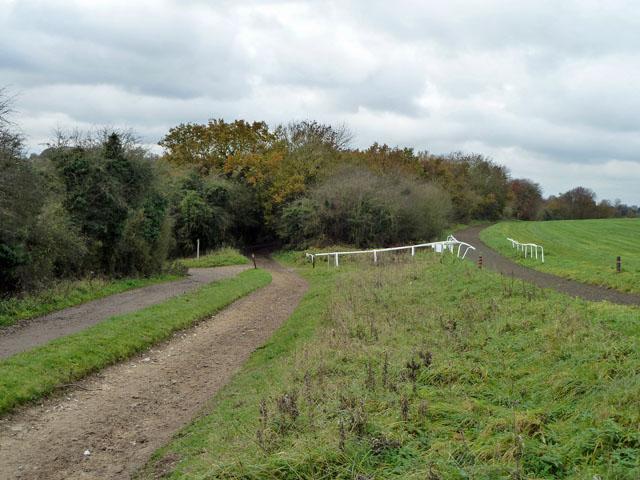 Parallel horse ways
