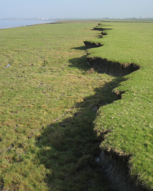 Upper step in saltmarsh, Littleton Warth