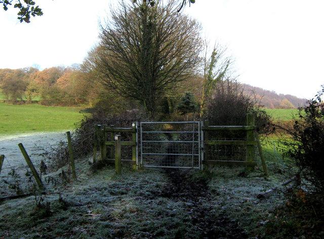 A horse friendly gate