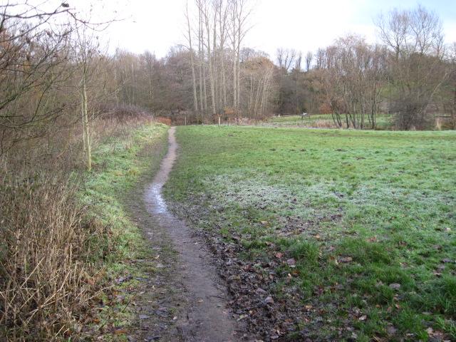 Footpath towards Lady Brook, Bramhall
